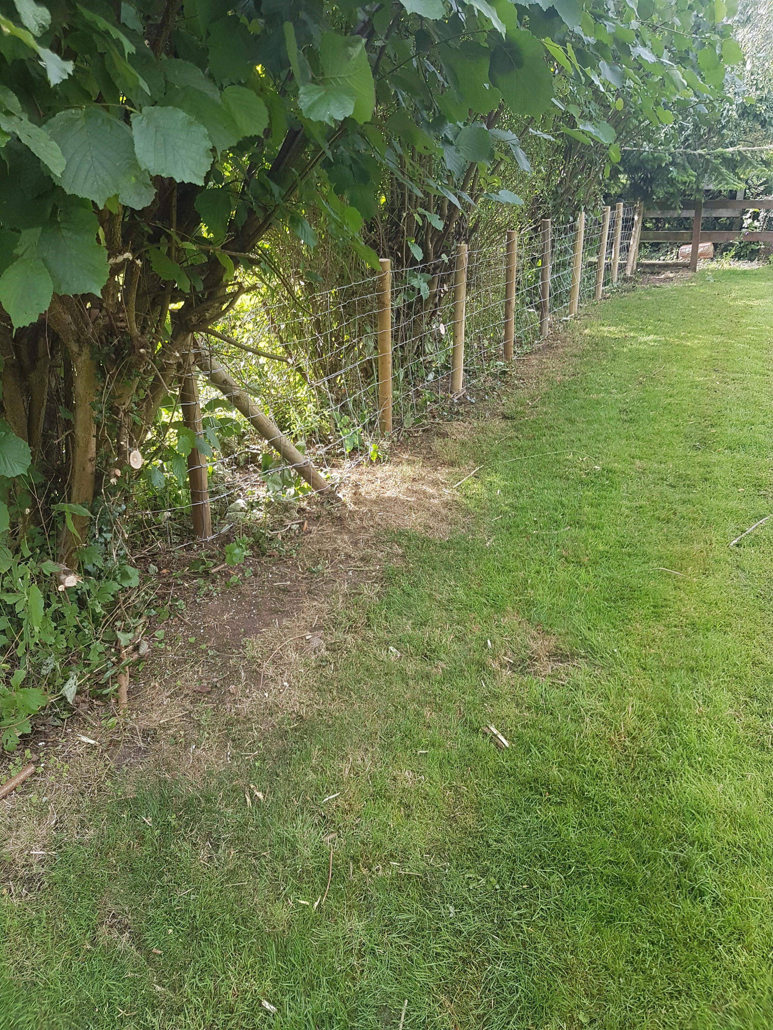 Wire Fence Installation