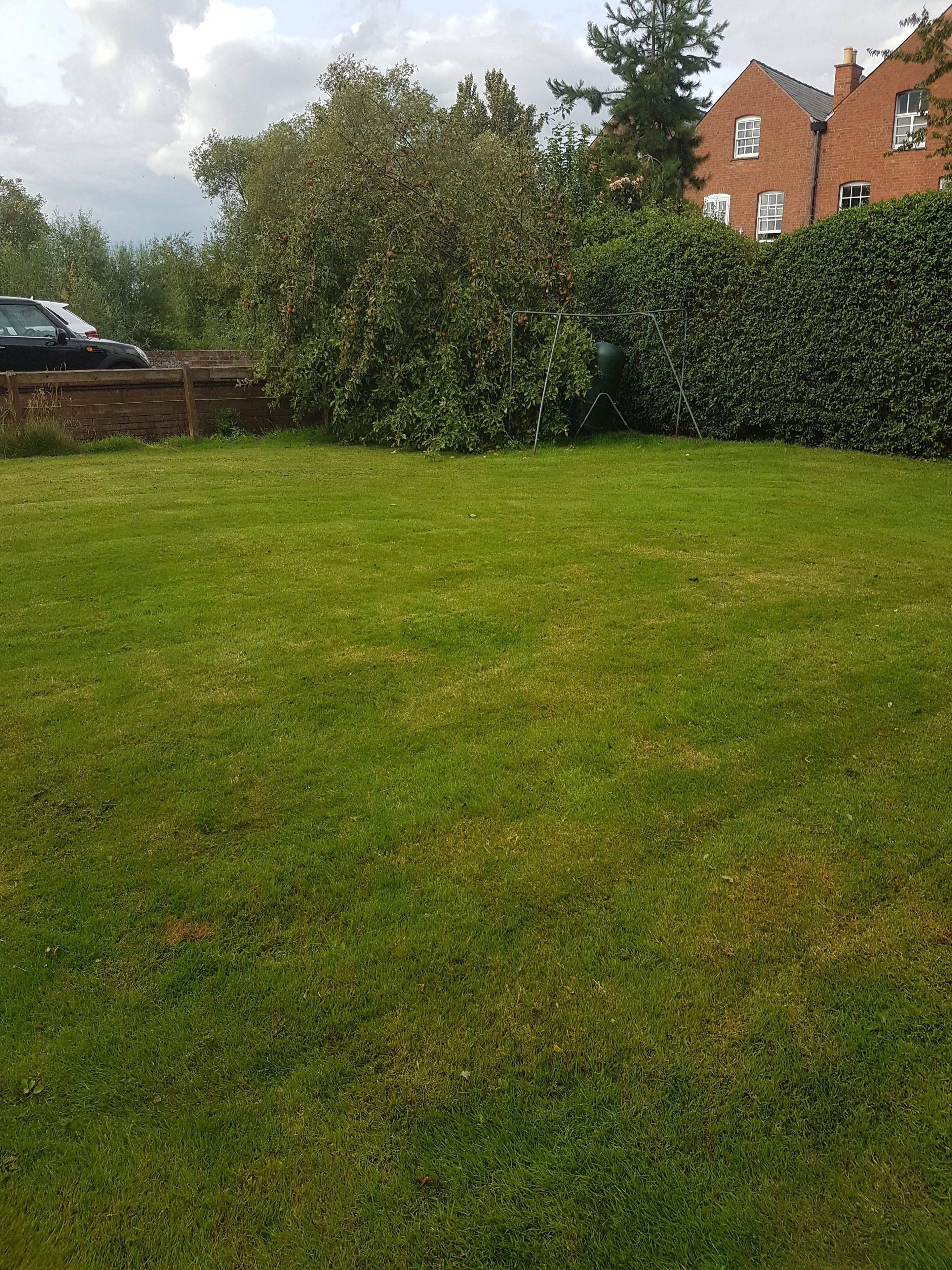 Lawn Mowed 2